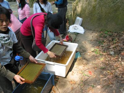 Papermaking and Art Classes