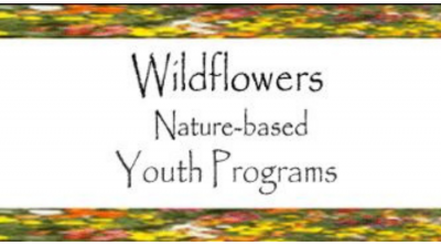 2017.10.21:  Wildflowers Nature School Gives Harvest Festival Proceeds to Fire Relief