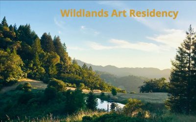 CALL FOR ARTISTS: Summer 2020 Art Residency At Wildlands Art Residency