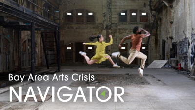 PROFESSIONAL DEVELOPMENT: Bay Area Arts Crisis Navigator