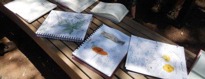 Nature Journaling Field Class