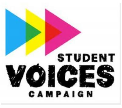 INTERNSHIP for HIGH SCHOOL: Arts Education Activism