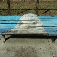 Delport Avenue Art Bench